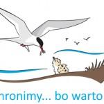 logo_rybitwy