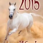 kalendarz-scienny-konie