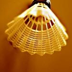 lotka-do-badmintona