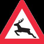 deer-44157_640